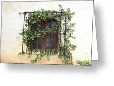 Mission Window With Yellow Flowers Greeting Card
