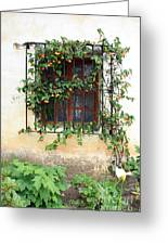 Mission Window With Yellow Flowers Vertical Greeting Card