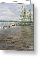 Mississippi Headwaters 2  Greeting Card