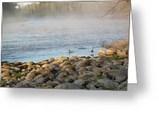 Mississippi River Duck Duck Dawn Greeting Card