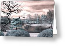 Missouri Botanical Garden Infrared Pond Blue Greeting Card