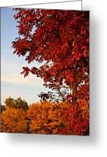 Missouri Fall Greeting Card