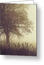 Mist Greeting Card by Odd Jeppesen