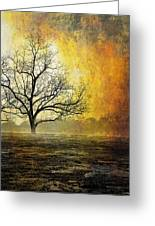 Mist Of Confusion Greeting Card