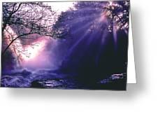 Mist Of Ireland Greeting Card