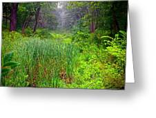 Mist On The Meadow  Greeting Card