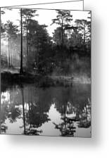 Mist On The Pond Greeting Card