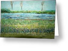 Mistery Pond In Orchard Park Ny Greeting Card