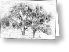 Mistletoe Tree In Black And  White Greeting Card