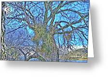 Mistletoe Tree Greeting Card