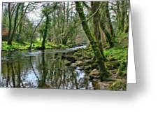 Misty Day On River Teign - P4a16017 Greeting Card