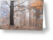 Misty Forest  Greeting Card