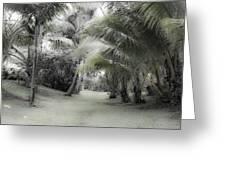 Misty Hawaiian Garden Greeting Card