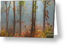 Misty Indian Morning Greeting Card