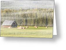 Misty Morning Haybales Greeting Card