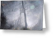 Misty Morning - Ojai California Greeting Card