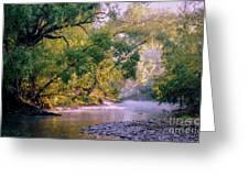 Misty Morning On Nariel Creek Greeting Card