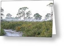 Misty Morning On The Trail Greeting Card