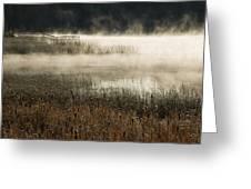 Misty Morning Greeting Card