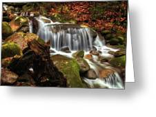 Misty Morning Waterfall Greeting Card