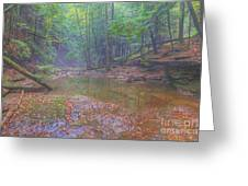 Misty Morning Woodscape Two Greeting Card