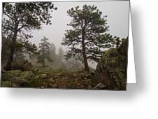Misty Mountain Path Greeting Card