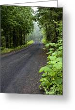 Misty Mountain Road Greeting Card