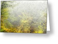 Misty No.2 Greeting Card