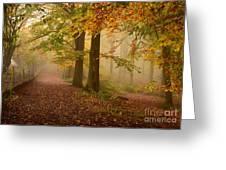 Misty Pathways  Greeting Card