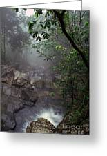 Misty Rainforest El Yunque Mirror Image Greeting Card