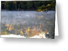 Dark Shoreline Frames Misty Fall Reflections On Jamaica Pond Greeting Card