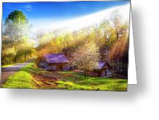 Misty Spring Morning Greeting Card