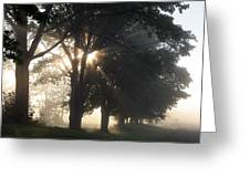 Misty Texas Morning Greeting Card