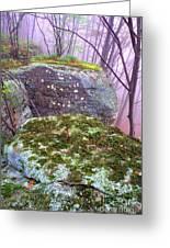 Misty Woodland Scenic Greeting Card