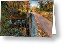 Mitford Bridge Over River Wansbeck Greeting Card