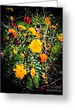Mixture Of Flowers On Summer Day Greeting Card