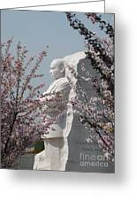 Mlk Blossoms Greeting Card