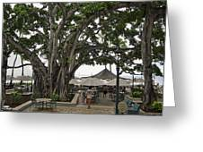Moana Surfrider Banyan Court - Waikiki Beach Greeting Card