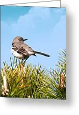 Mockingbird 03 Greeting Card