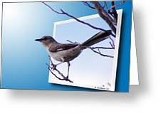 Mockingbird Branch Greeting Card
