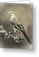 Mockingbird Greeting Card