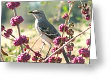 Mockingbird Heaven Greeting Card