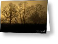 Morning Fog, #2, Smoky Mountains, Tennessee Greeting Card