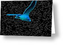 Moewe - Seagull Greeting Card