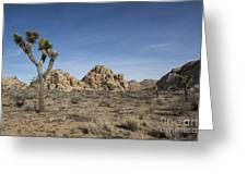 Mohave Desert Greeting Card