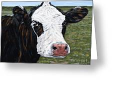 Mohawk Cow Greeting Card