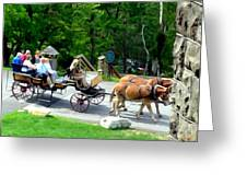 Mohonk Carriage Tour Greeting Card