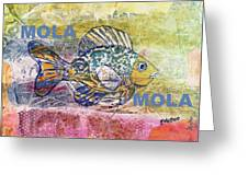 Mola Mola Greeting Card