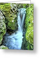 Moine Creek Goes Vertical Greeting Card