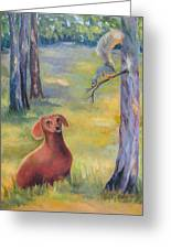 Molly And The Squirrel Greeting Card